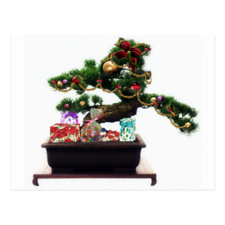 Bonsai Christmas Tree Postcard