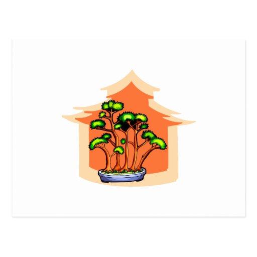 Bonsai Clump Graphic Image 1 Postcards