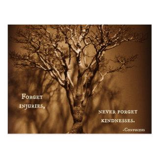 Bonsai & Confucius Kindness Quote Postcard