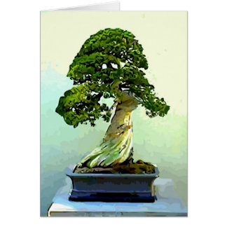 Bonsai Cypress Tree Card