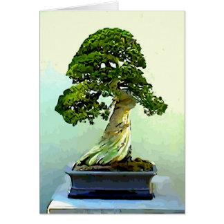 Bonsai Cypress Tree Greeting Card