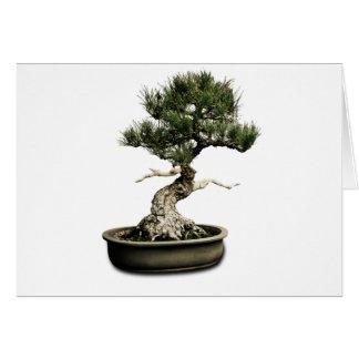 Bonsai Greeting Card