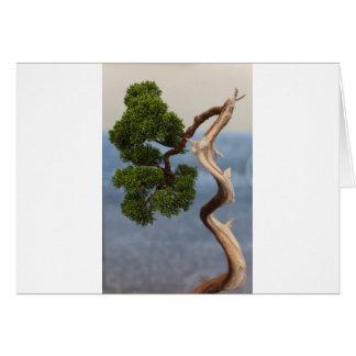 bonsai in the garden card