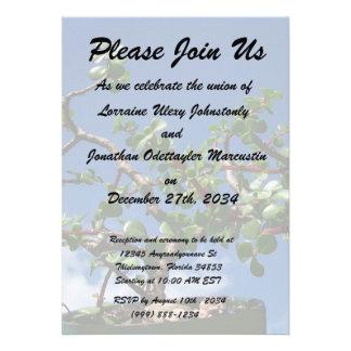 Bonsai portulacaria afra tree 1 personalized invite