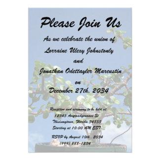 Bonsai portulacaria afra tree 2 custom invitations