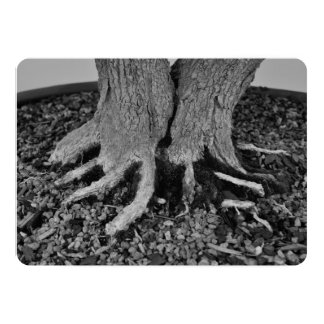 Bonsai Roots - Invitation