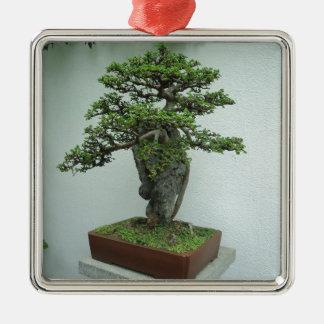 bonsai Silver-Colored square decoration