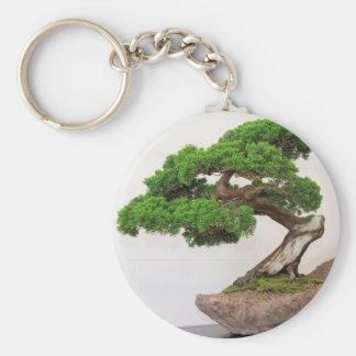 Bonsai tree- natural key ring