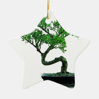 bonsai-tree Painting Ceramic Star Decoration