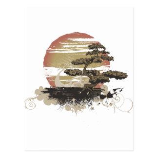 Bonsai Tree Post Cards
