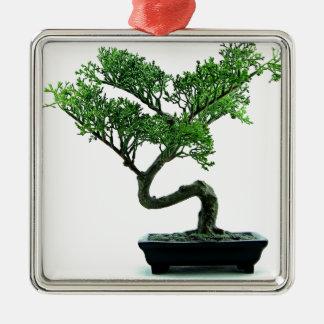 Bonsai Tree Silver-Colored Square Decoration