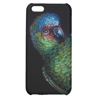 Boo! iPhone 5C Cases