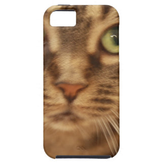 Boo Kitty iPhone 5 Cases
