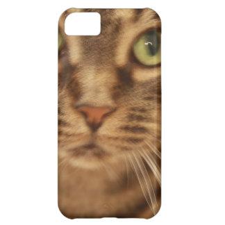 Boo Kitty iPhone 5C Case