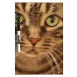 Boo Kitty Dry-Erase Whiteboards