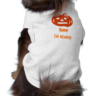 Boo Scary Halloween Pumpkin Pet Clothing