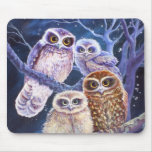 Boobook Owl Family Mousepads