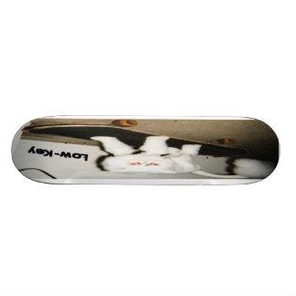 Boogie Board Skateboard