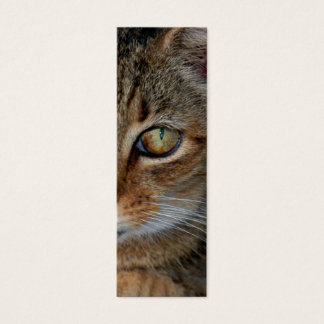 "Bookmark or profile card ""Cats Rule"""