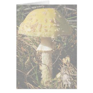 Boomer Botanical Forest Card