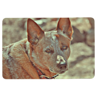"""Boomer"" Red Heeler Floor Mat"