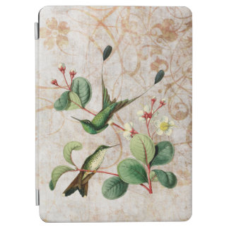 Booted Racket Tail Hummingbird iPad Air Cover