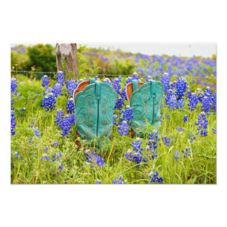 Boots and Bluebonnets Print