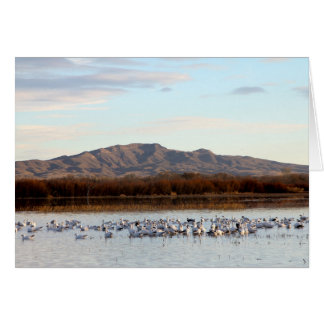 Boque del Apache, New Mexico Greeting Card