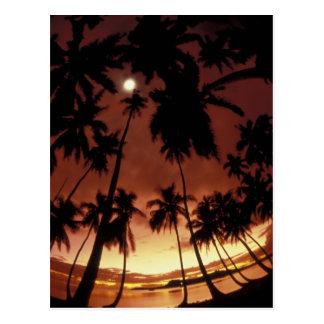 Bora Bora, French Polynesia Sunset shot through Postcard