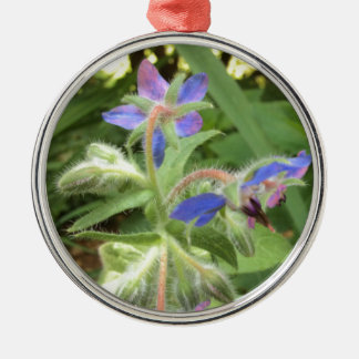 BORAGE Blue Pink Green --- Silver-Colored Round Decoration