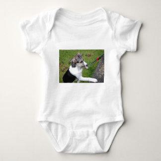 border colie baby bodysuit