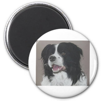 Border Collie 3 Magnet