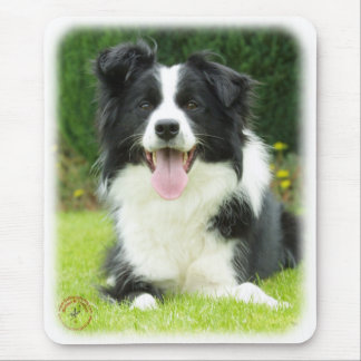 Border Collie 9A014D-14 Mouse Mat