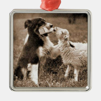 """Border Collie and Lamb""~Border Collie Ornament"