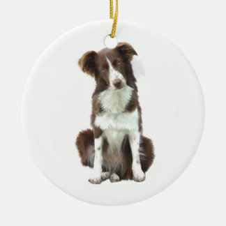 Border Collie (B) - brown and white Christmas Ornament
