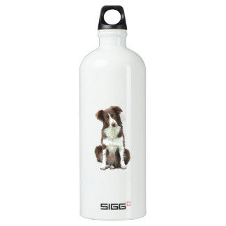 Border Collie (B) - brown and white Water Bottle