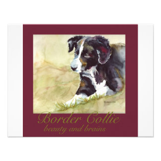 Border Collie Beauty and Brains Personalized Announcements