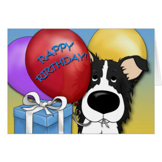 Border Collie Birthday Card