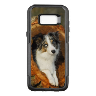Border Collie Blue Merle Dog Photo - Commutercase OtterBox Commuter Samsung Galaxy S8+ Case