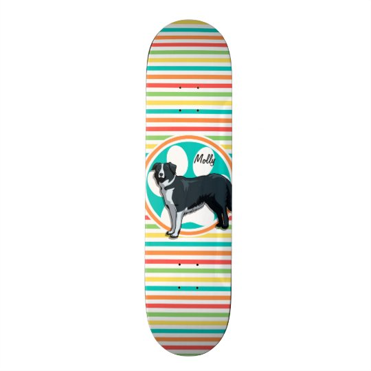 Border Collie; Bright Rainbow Stripes Skate Board