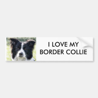 Border Collie Bumper Sticker