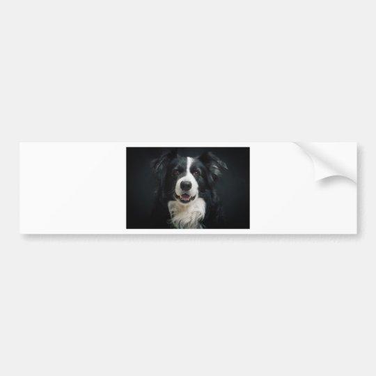 border-collie bumper sticker