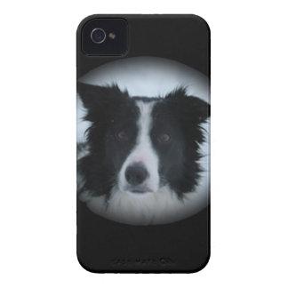 Border Collie Case-Mate iPhone 4 Cases