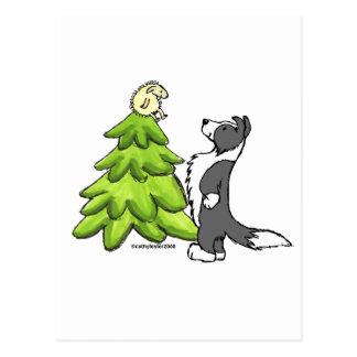 Border Collie Christmas Postcard