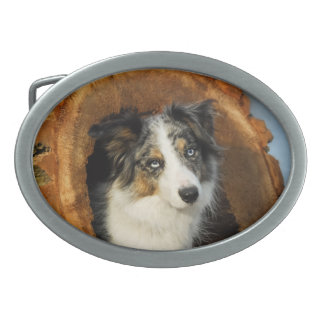 Border Collie cute dog Belt Buckles