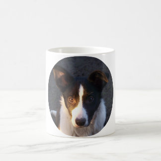 Border Collie - Dixie Coffee Mugs