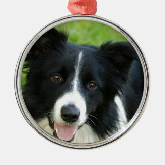 Border Collie Dog Add Text Pet Silver-Colored Round Decoration