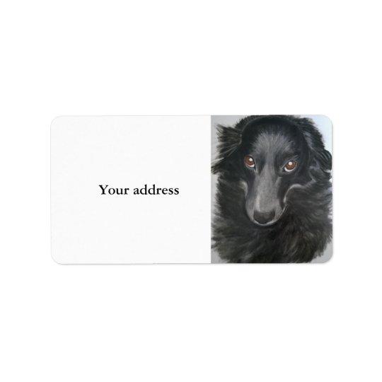 border collie dog face address label