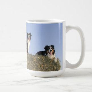 Border Collie Dog Lovers Photo Mug