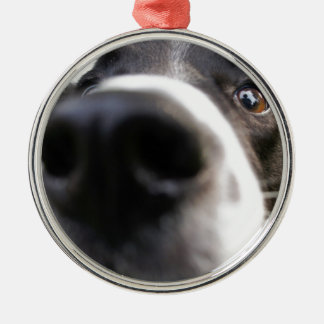 Border Collie Dog Nose Christmas Ornament